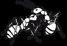 Logo Weingut Bisang Onlineshop Store Ameisen