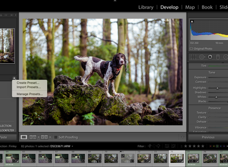 How to install Lightroom presets on desktop & mobile