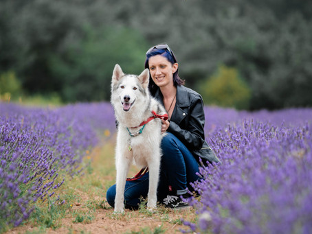 A perfect day out at Wolds Way Lavender