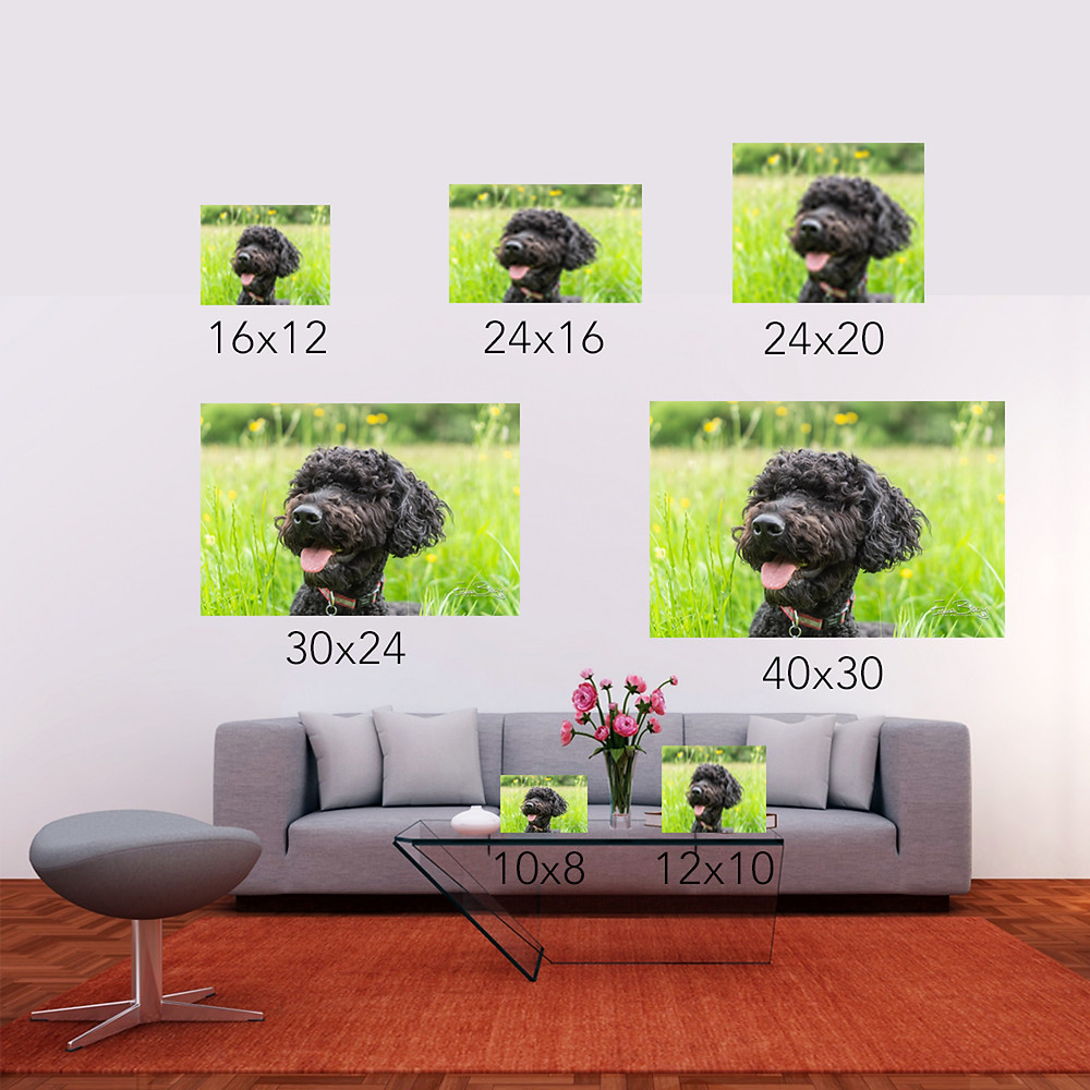 Guide to various sizes of wall art in a living room setting