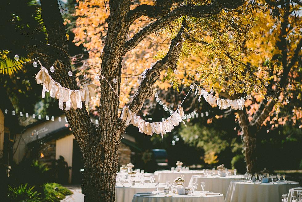Des guirlandes, notamment composées d'ampoules pour certaines accrochées à des arbres fleuris, c'est de la décoration pour un événement