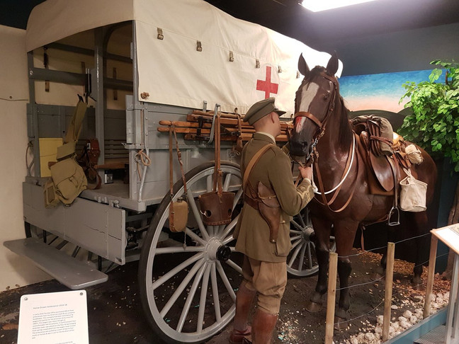 A Trip to The Museum of Military Medicine