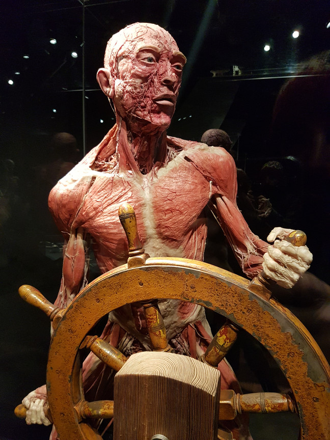 Mr I takes a trip to the Bodyworlds Exhibition in Amsterdam!