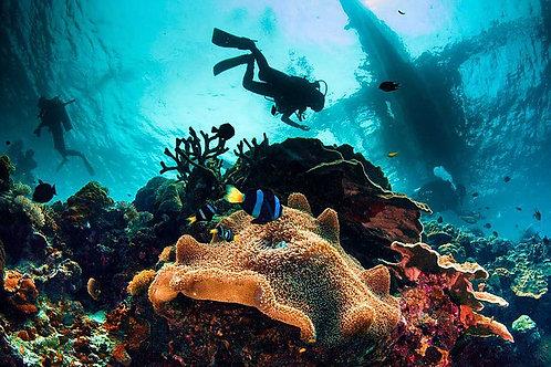 Snorkeling plus plongée bouteille débutant Pulau Payar plateforme Enfant