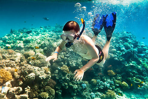Snorkeling Pulau Payar plateforme Adulte