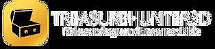 official Treasure Hunter 3D logo