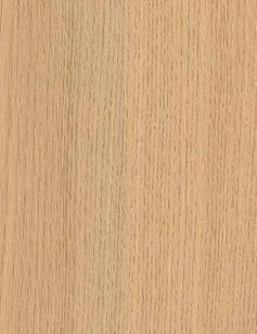 Ferrara Oak