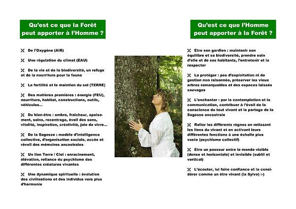 Cartographie Réciprocité Forêt Homme.jpg
