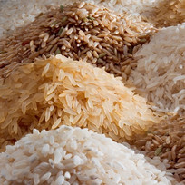 rice_grains_cat-4_edited.jpg