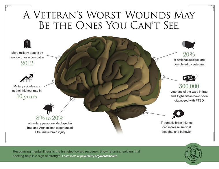 veterans-wounds.png