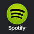 spotify-icon-2.png