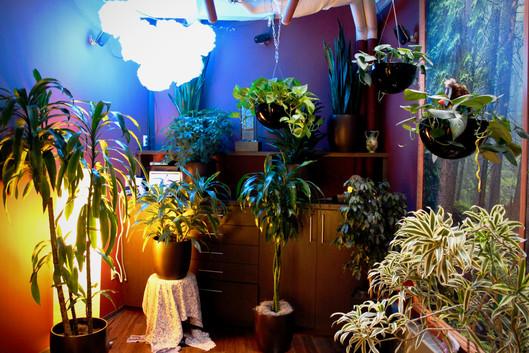 zen room 11.jpg
