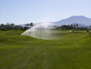 SPRINKLERS AND SUBSURFACE DRIP