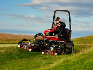 TRIM AND SURROUNDS MOWERS