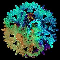 Watercolor Mandala 4.png