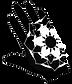 hand mandala Right.png