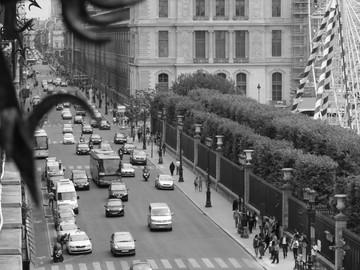 Parisian Memoirs