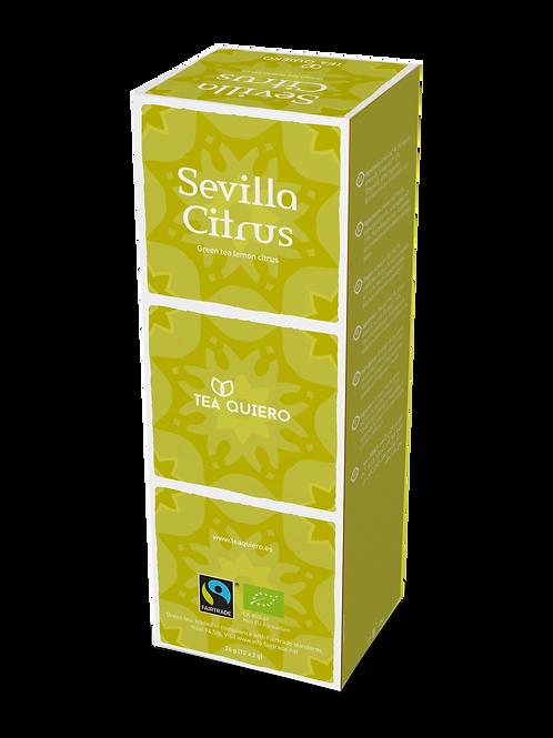 Tea Quiero, Sevilla Citrus, Organic, Fair-trade, Premium Tea ( 12bags