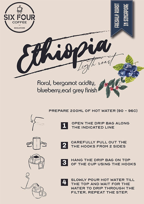 Ethiopia MV drip bag