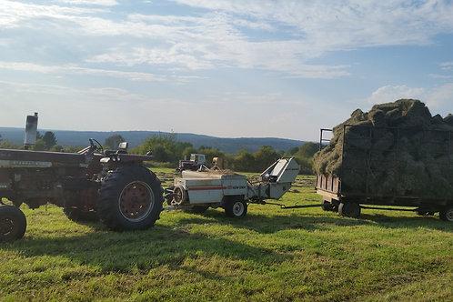 Second Crop Hay