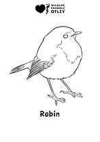 Robin colouring in.jpg