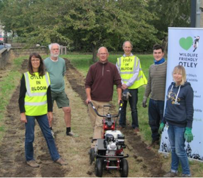 OTLEY SOW THE SEED TO HELP WILDLIFE