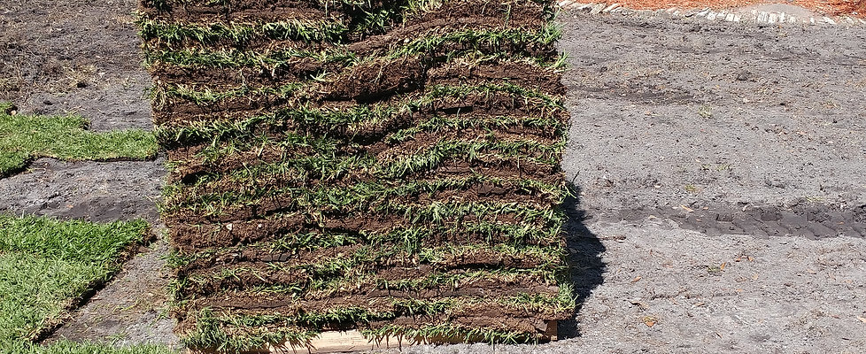 Sod Install (No Prepping)