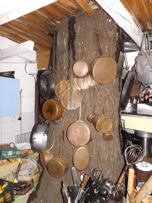 l'arbre_à_casseroles.jpg