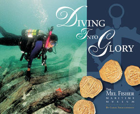 DIVING INTO GLORY (softcover) by Carol Shaughnessy
