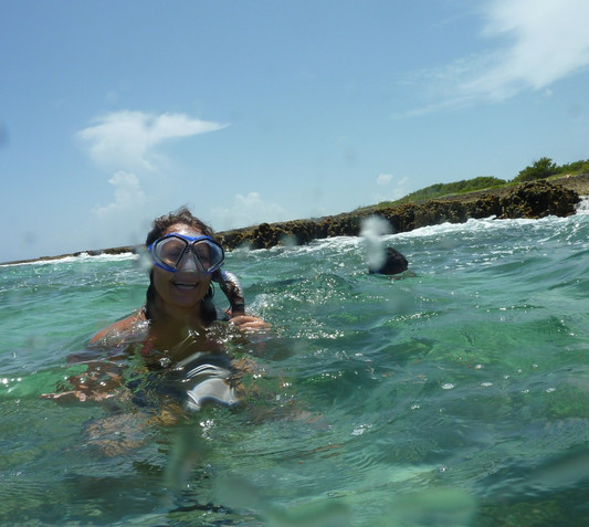 Snorkel  Searching