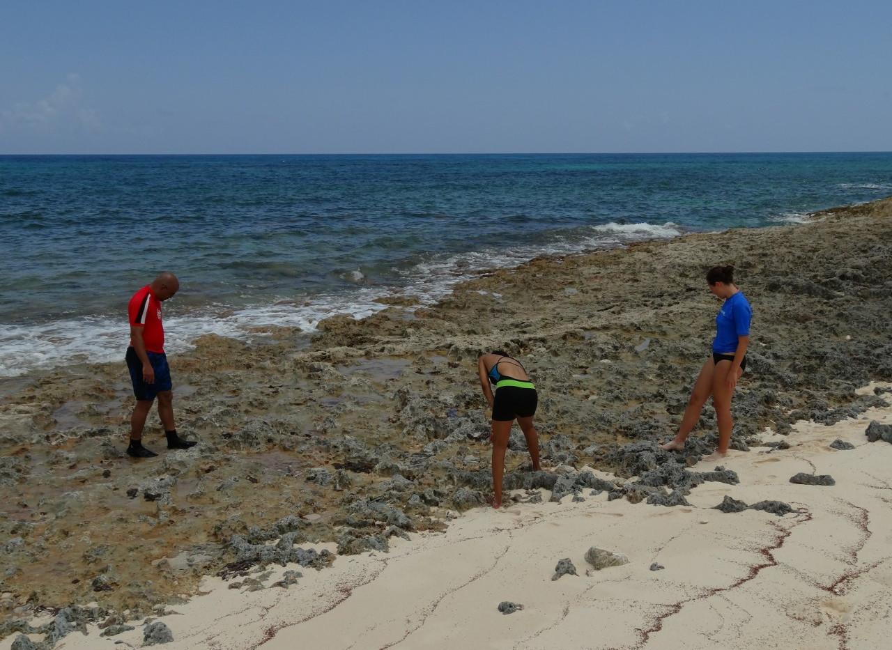 Buscando la orilla