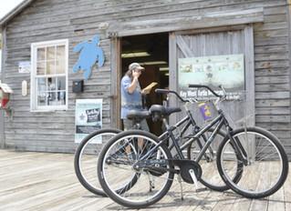 Key West Turtle Museum - Seasonal Opening Dates Announced