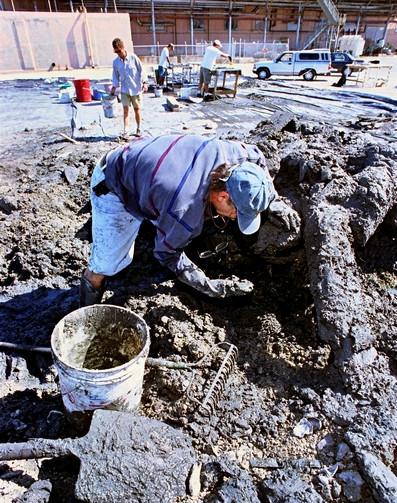 Dirty Work!