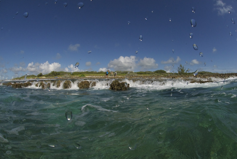 Vista del sitio del naufragio de Peter Mowell en Lynyard Cay desde el agua