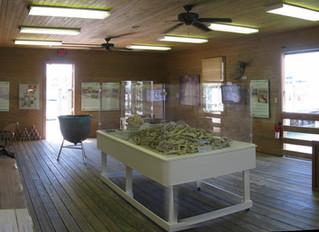 Key West Turtle Museum - A New Season