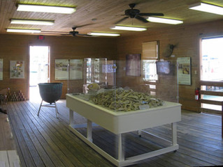 Key West Turtle Museum - A New Season