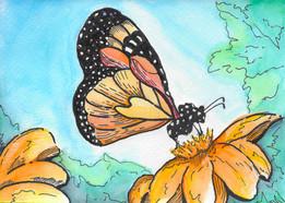 Monarch & Flower