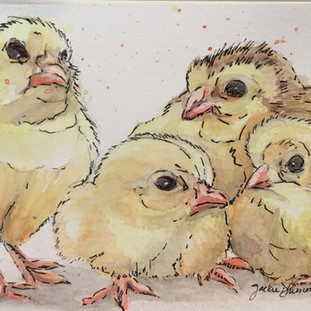 Mama and Her Lil Chicks
