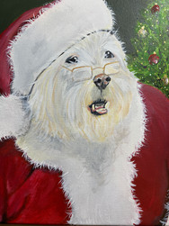 Paddy Claus