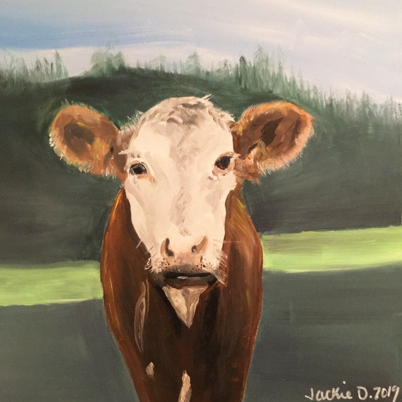Handsome Cow