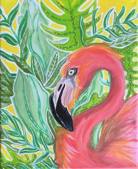 Flamingo Joe