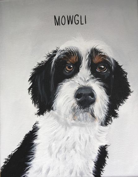 Mowgli_8x10_Understated Portrait Style.j
