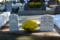 New Orleans cemetery restoration tomb restoration tomb repair tomb cleaning painting cemetery repair