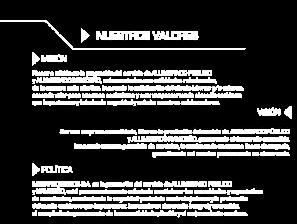 pagina web mega-125.png