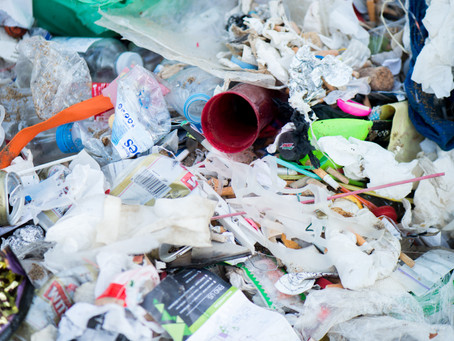 Plastic Pollution - The Basics