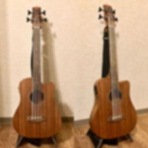 GoldTone M-Bass 23inch.jpg