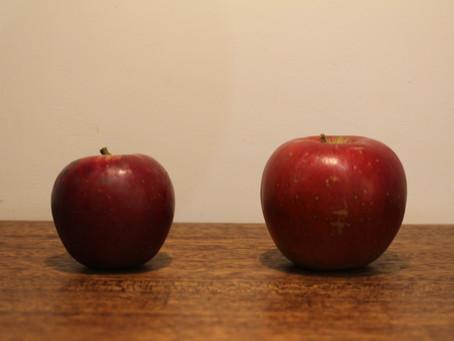 無農薬の林檎。