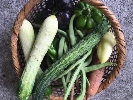 明日は伊藤さんのお野菜販売