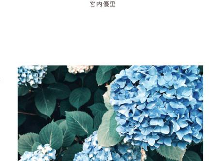 宮内優里 LIVE&読書BGM 「初夏」