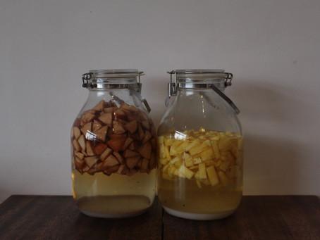 果実酢作りのワークショップ